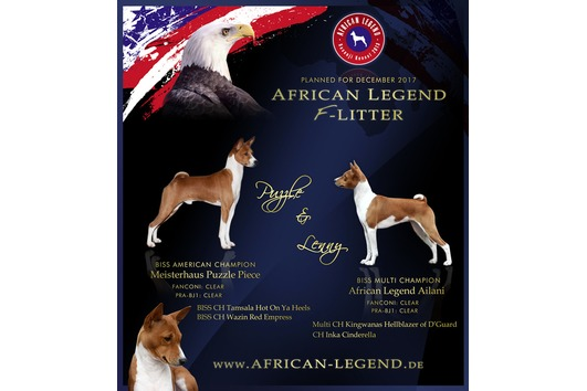 Basenji Kennel - African