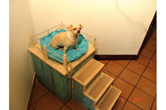 Hundebett, Hundeschlafplatz, Hundetreppe,