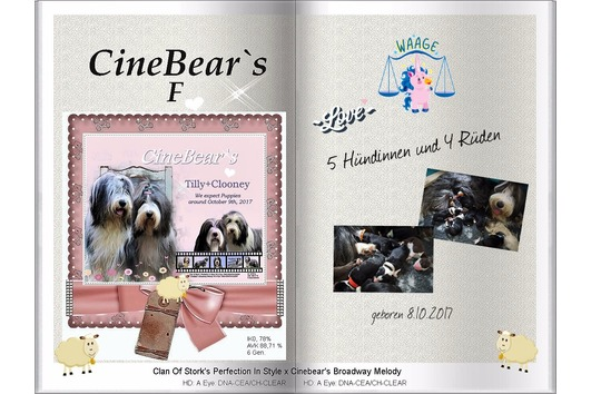 CineBear`s Bearded