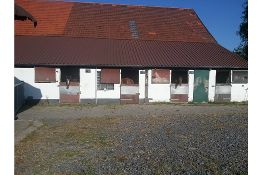 2xFensterbox, Aussenbox, Paddock